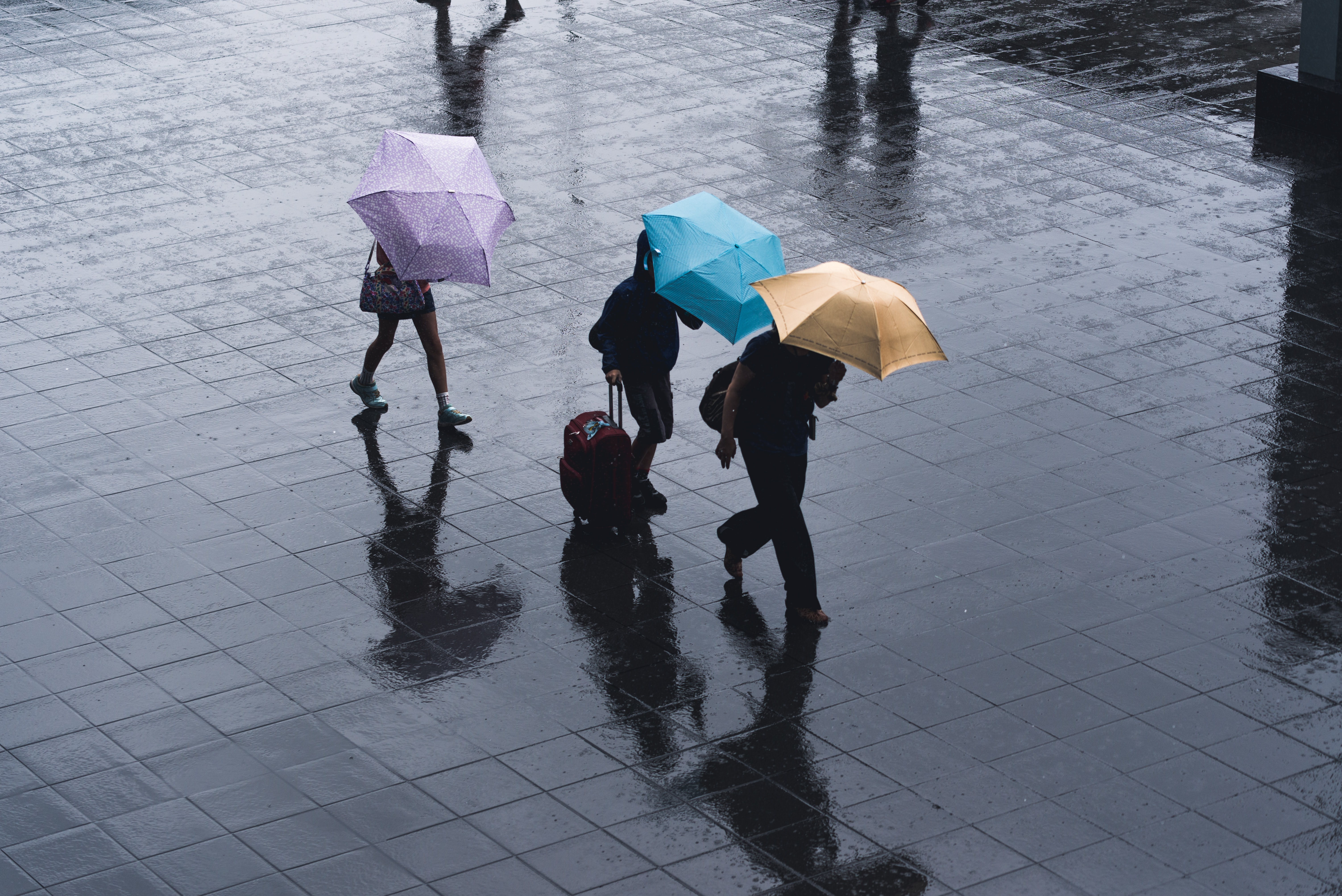 Jangan Lupa Bawa Perlengkapan Ini Saat Mengikuti Bimbel Kelas di Musim Hujan